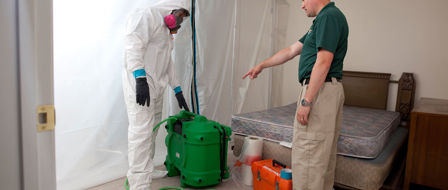 Thomasville, GA mold removal process